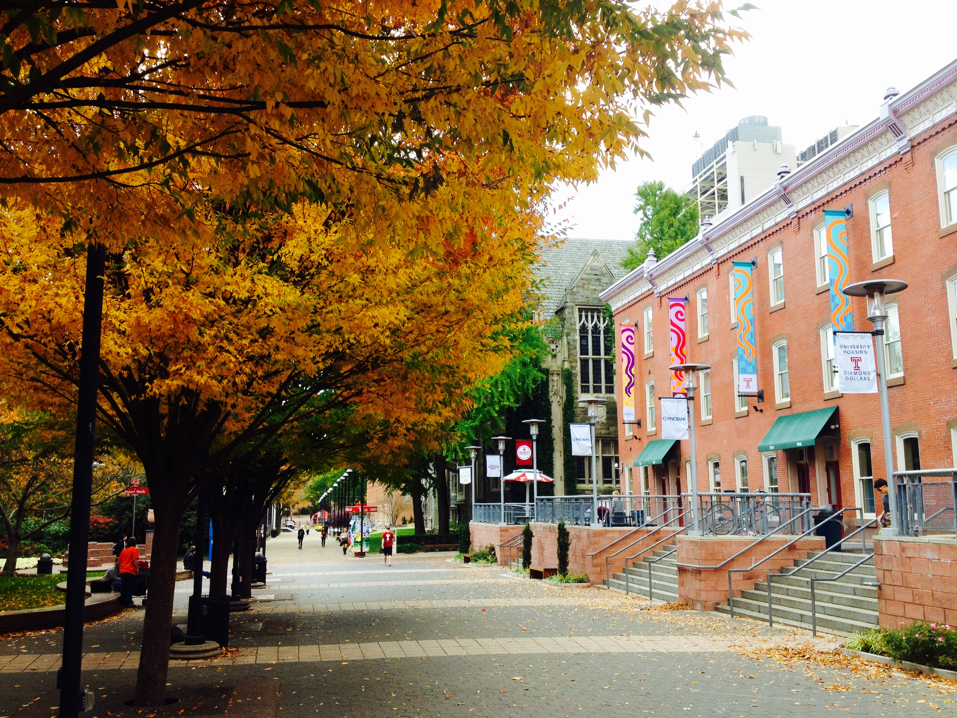 Temple University in the Fall