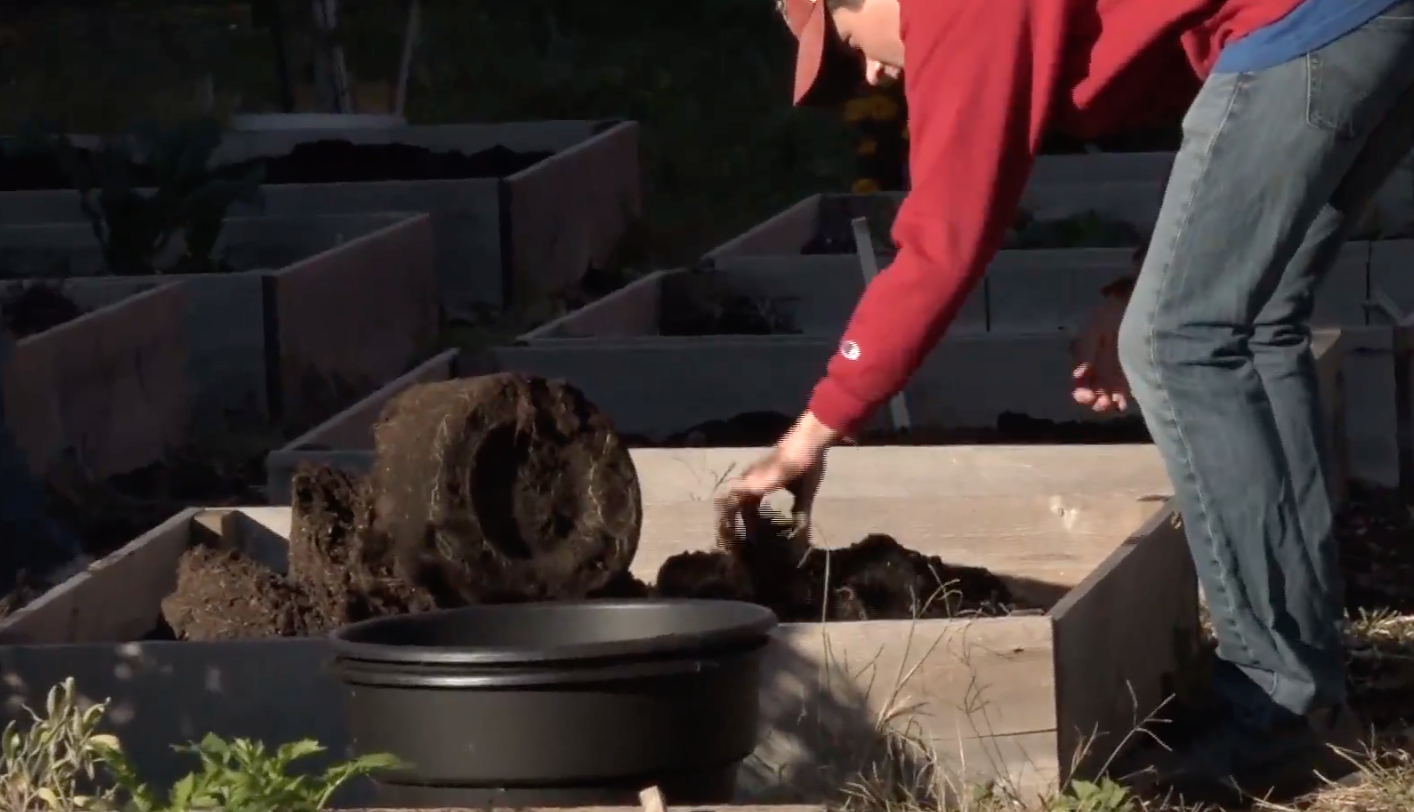 The Temple Community Garden Gets a New Addition